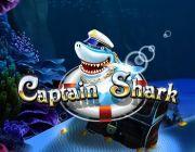 Captain Shark