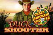 Duck Shooter Crazy Chicken